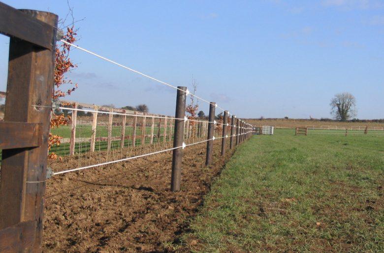 Elec Horse Cable